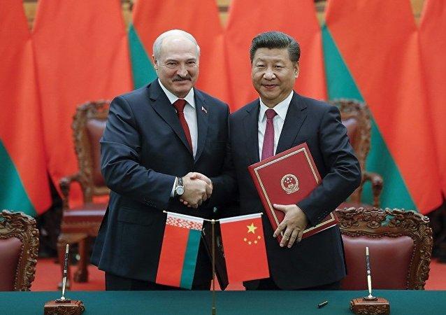 中国外交部:已有十余家企业入驻中白工业园