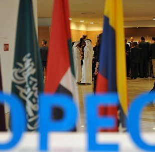 尼日利亚希望将欧佩克与非欧佩克产油国协议延长至今年年底