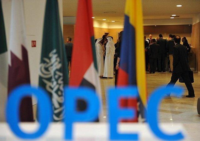 沙特能源大臣:尼日利亚收到加入非欧佩克产油国监督委员会的邀请