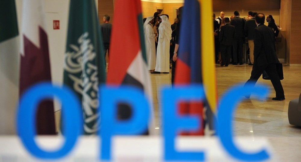 阿联酋能源部:欧佩克将邀请美国页岩油生产商出席维也纳会议