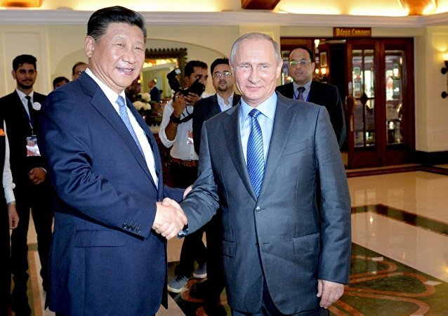 中国外交部:中国国家主席习近平将在岘港与俄罗斯总统普京举行会见