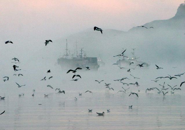 近90條被朝鮮拋棄的漁船漂至日本沿岸