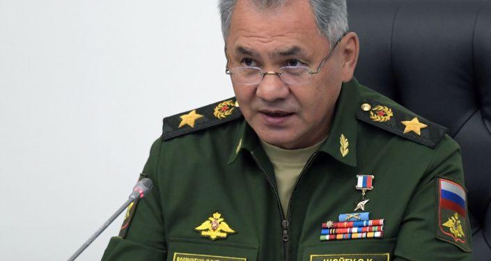 俄国防部长绍伊古大将