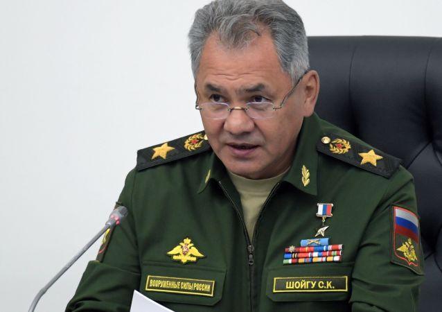 俄防長:年底前俄軍現代化武器所佔比例將超過50%