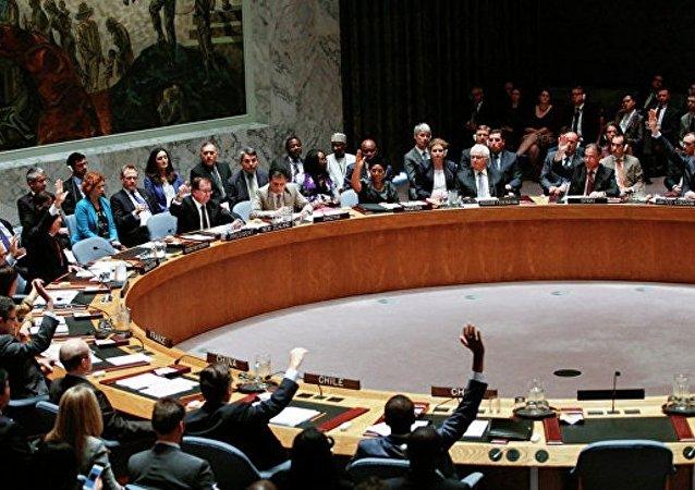 聯合國安理會週二會議以默哀一分鐘以悼念丘爾金開始