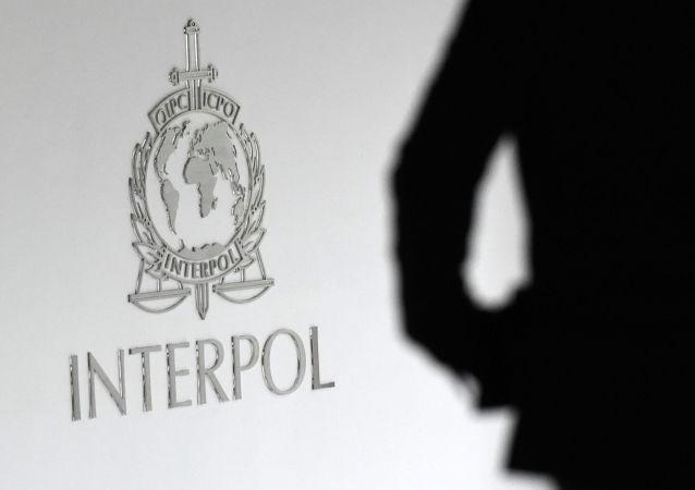 国际刑警组织