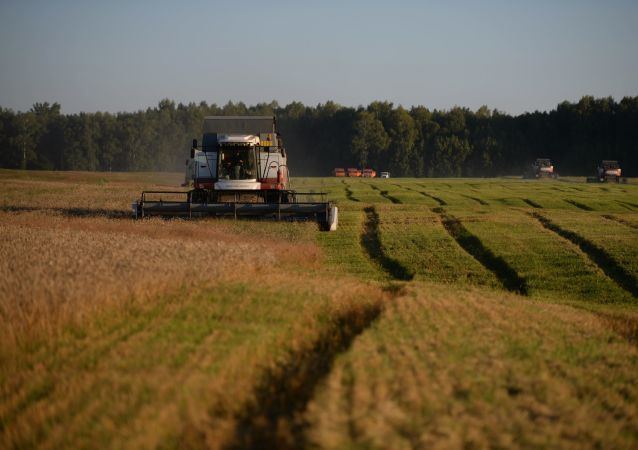 联合国粮农组织:农业区系发展中国家经济增长的关键