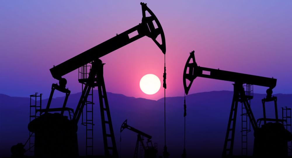 委总统称第一季度将举行新的产油国会议