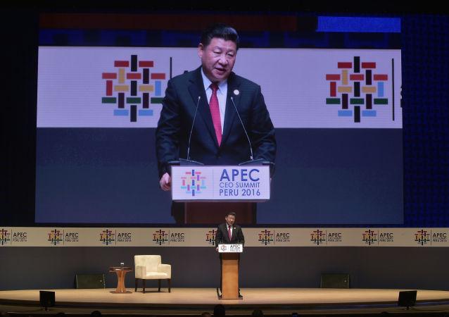 習近平:中俄應深化亞太自貿區的推進進程