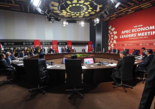 利馬宣言:亞太經合組織領導人譴責恐怖主義 呼籲繼續交換反恐經驗