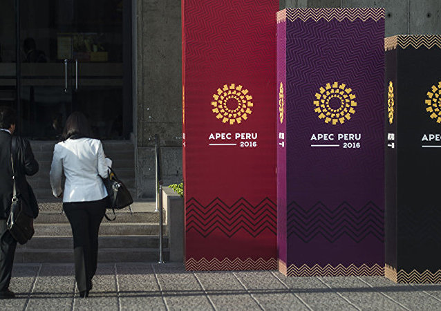 普京与特朗普暂无在APEC峰会期间举行会晤的计划