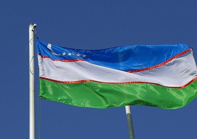 獨聯體觀察團團長:烏茲別克斯坦總統選舉是公開和民主的