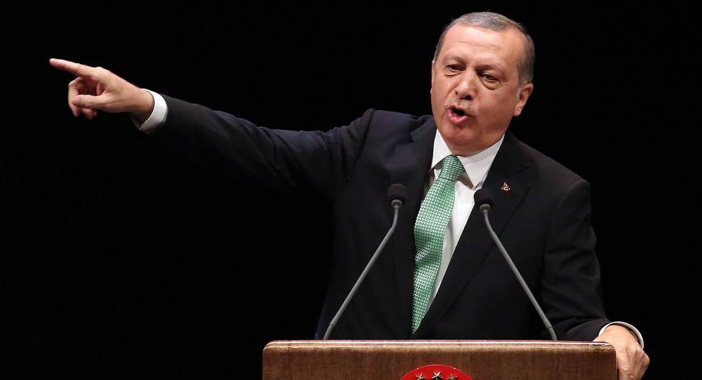 中國專家:土耳其總統的很多言論實際上是向西方要價的籌碼
