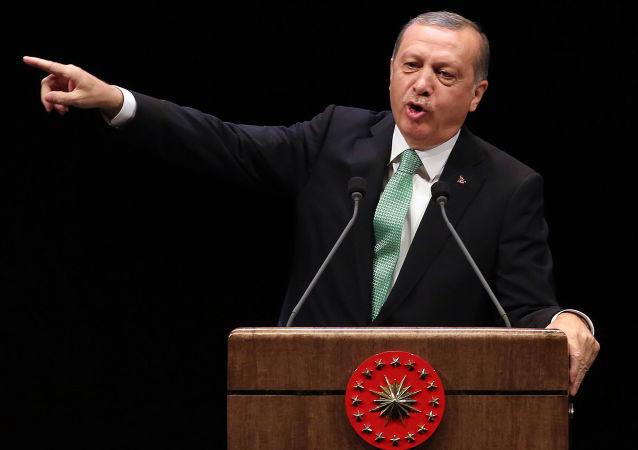 埃爾多安當選土耳其執政黨主席