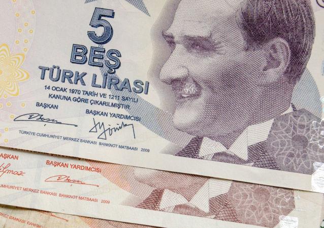 土耳其准备与包括俄罗斯在内的伙伴国改为本国货币结算