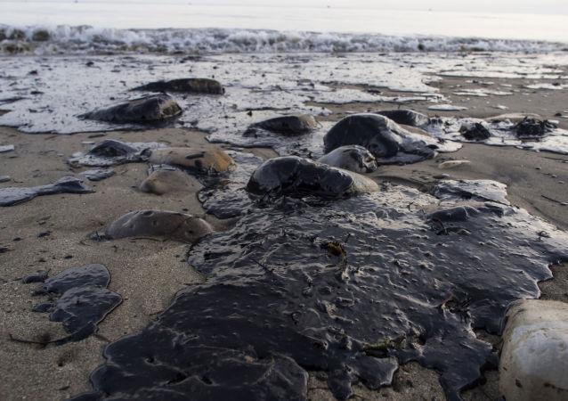 俄科学家研制出生物过滤器 可清理海水中的石油