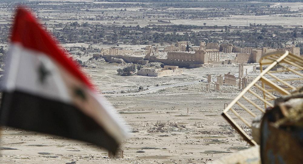 媒体:叙政府军和民兵正肃清巴尔米拉西区