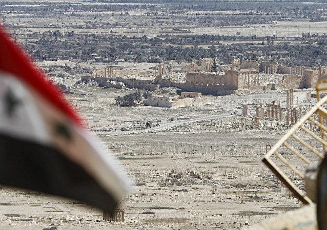 媒體:俄土協商建議敘衝突各方29日零點起停火