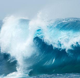 巨浪致拍照女游客受伤
