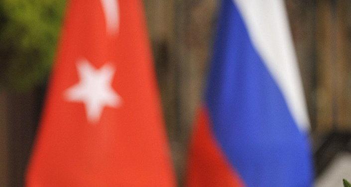 普京:俄罗斯和土耳其的协作正在深化