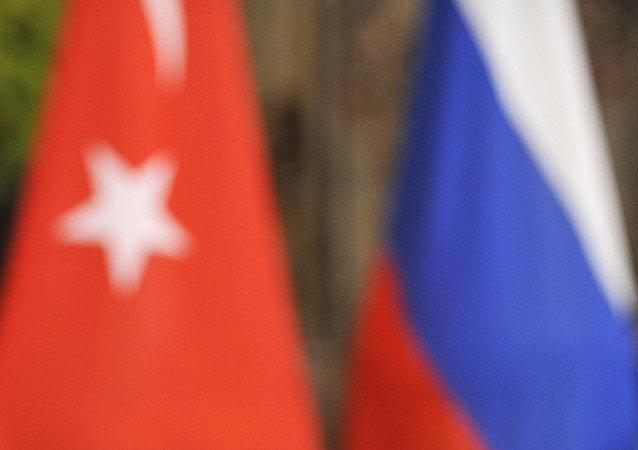 普京任命新的驻土大使