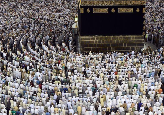 俄联邦委员会副主席:2017年将有2万多名俄穆斯林赴麦加和麦地那朝觐