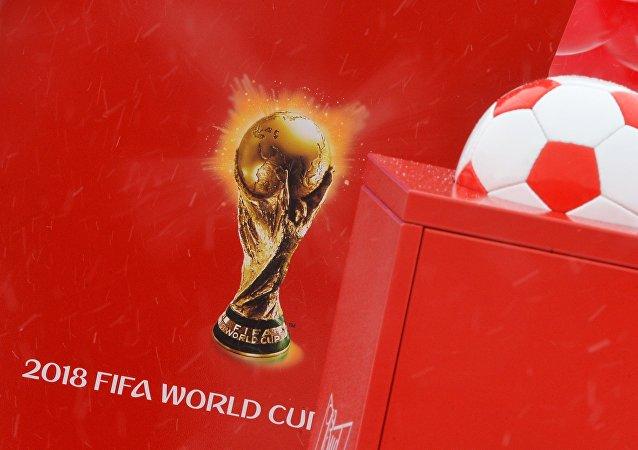 莫斯科準備就安全問題同2018世界杯參賽國進行合作