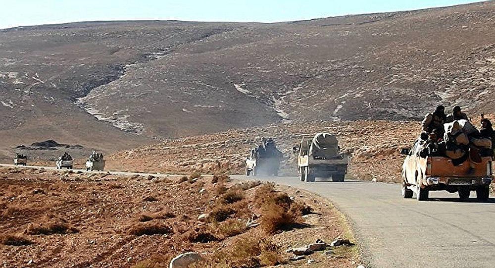 利比亚议长指责土耳其支持利境内恐怖分子