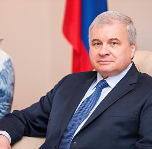 俄驻华大使:2017年俄中贸易额将达到800亿美元