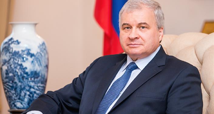 俄駐華大使:2017年俄中貿易額將達到800億美元