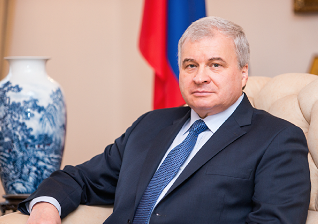 俄駐華大使:安徽省將舉辦中俄「兩河流域」地方合作理事會第二次會議