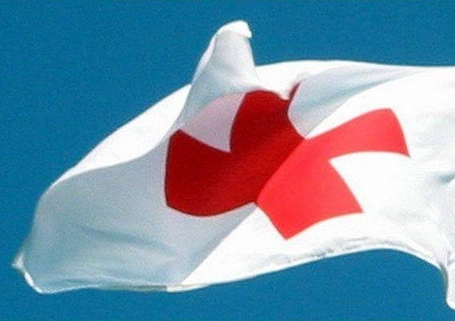 国际红十字会