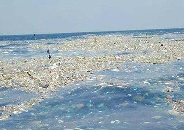 海洋塑料污染