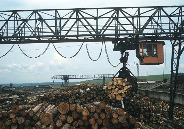中國企業計劃在俄遠東建造木材工業園