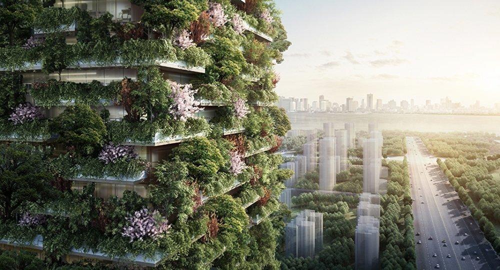 兩年後中國將建成森林城市