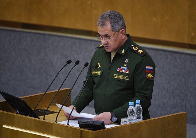 俄防长:24位防长确认出席莫斯科安全会议