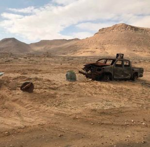 叙霍姆斯降级区3个月来有约500名武装分子缴械