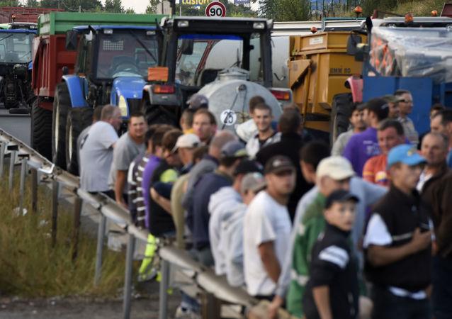 巴黎方面声明,法国农场主因俄罗斯禁止粮食进口规定而遭受损失