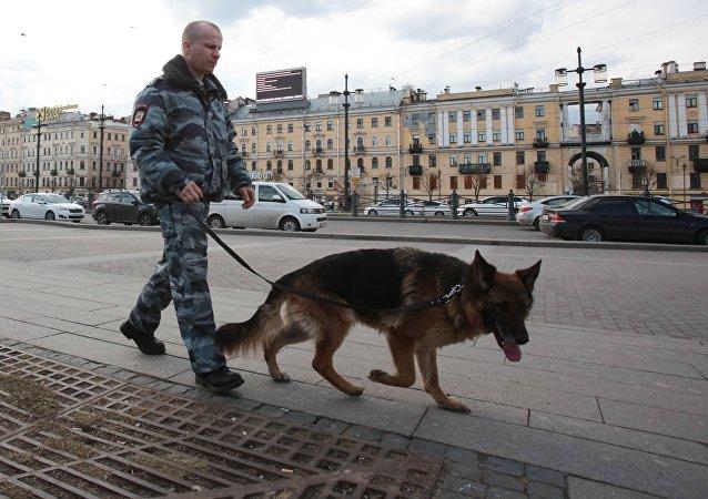 圣彼得堡一住宅楼现爆炸装置已拆除