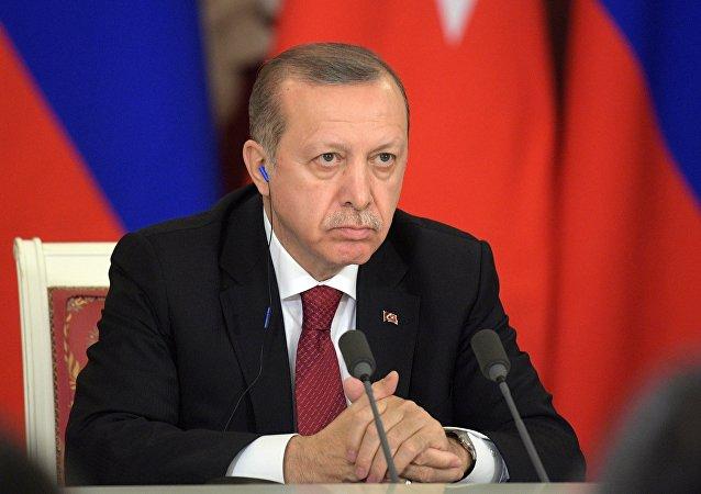 埃爾多安:有很多敵人期待土耳其滅亡