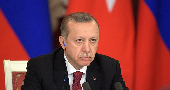埃尔多安:有很多敌人期待土耳其灭亡