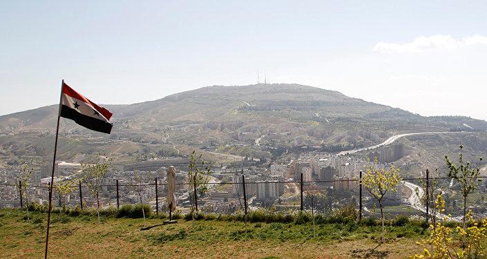 大马士革未违反销毁化武库义务