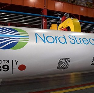 Nord Stream 2公司将评估北溪2号项目对俄环境影响