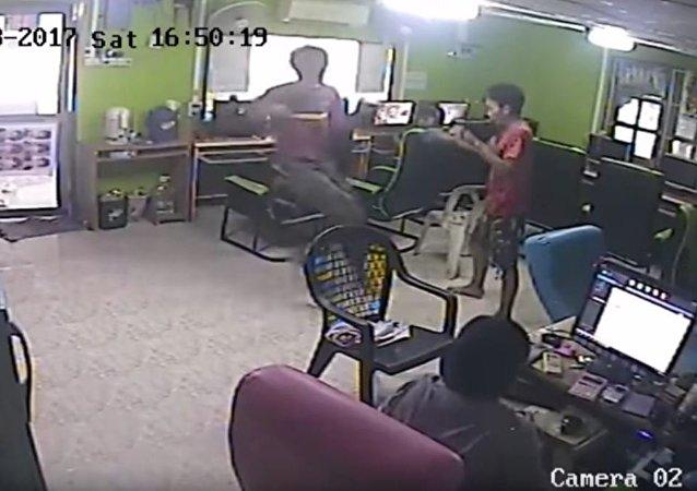 一条蛇袭击了泰国网吧内的顾客