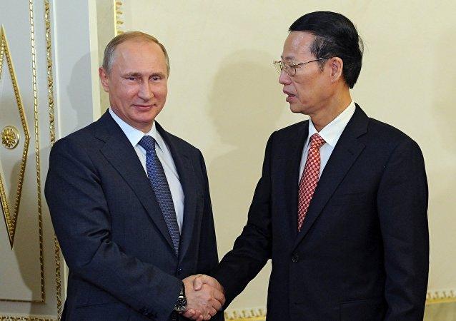 俄罗斯总统普京与中国国务院副总理张高丽。