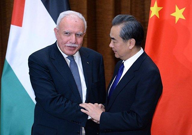 中国外长:解决巴以问题应首先停止新建定居点以及暴力行为