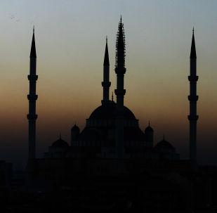 土总统新闻处:卡塔尔将向土耳其直接投资150亿美元