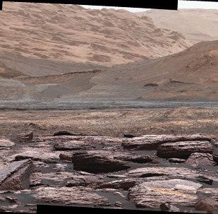 科学家:蚯蚓或可在火星土壤中存活