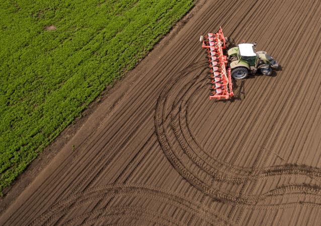 研究:俄近一半农业土地未得到利用