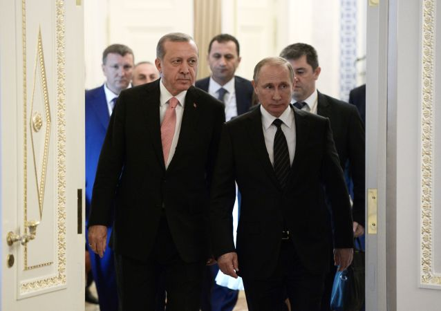 俄土两国领导人将详细讨论双边军事技术合作问题